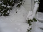 My house, this winter